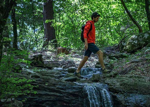 Parco del Respiro Fai della Paganella Forest bathing
